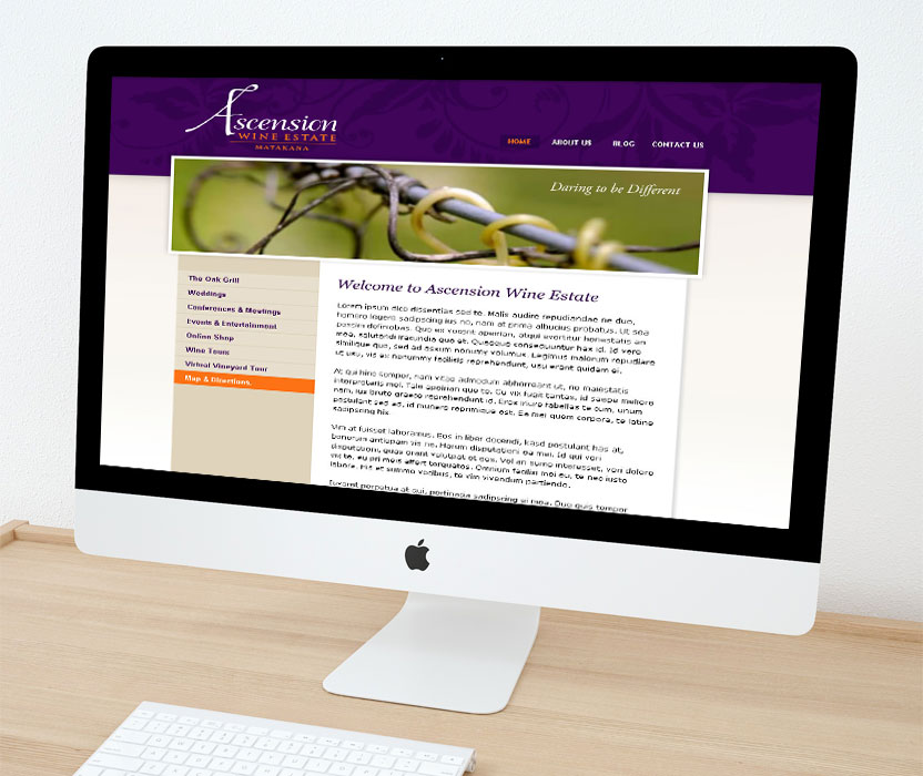 Evolve Marketing Agency client example - Ascension website