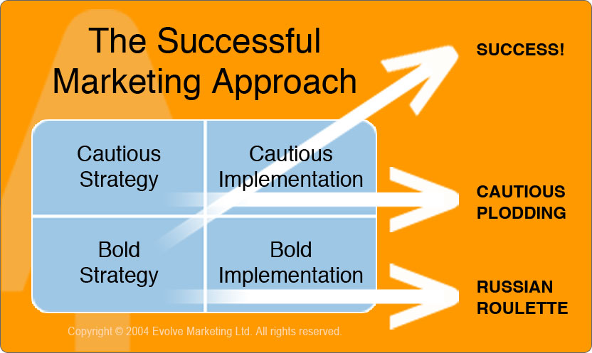 The Successful Marketing Plan Approach - Copyright (C) Evolve 2004