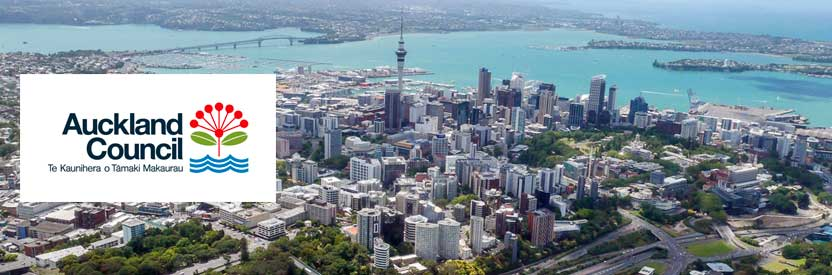 Evolve Marketing Agency strategic planning - Auckland Council